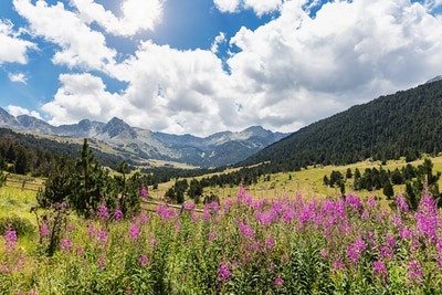 Gettyimages 521230220 Andorra Pyreneene Vandring