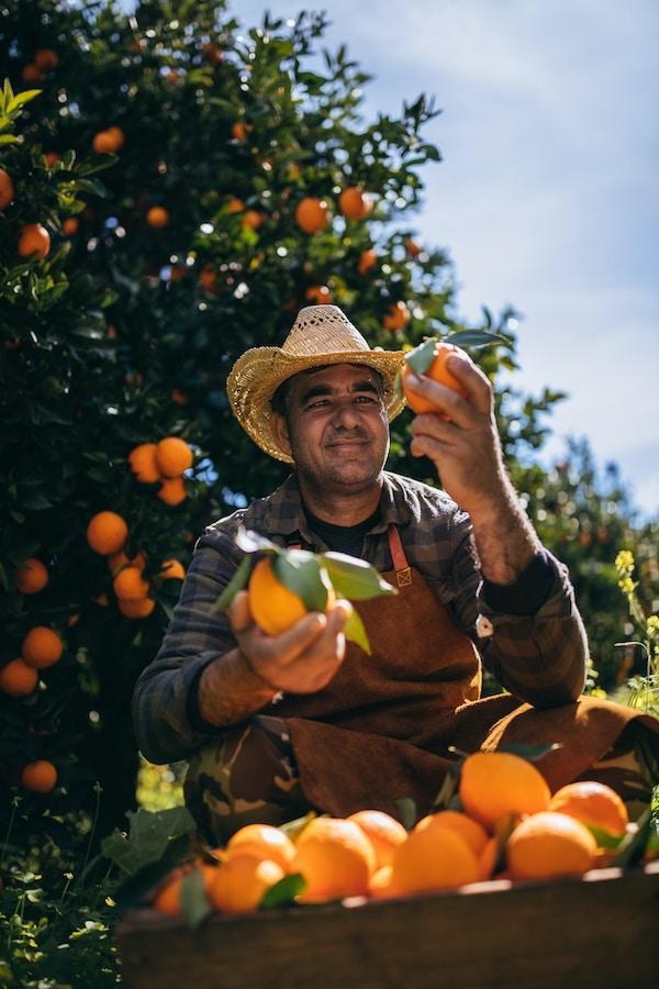 Getty Images 976850948 Cypern man apelsin