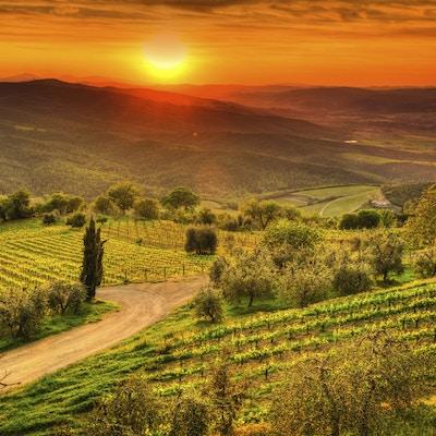 Istock 000020297769 Toscana Italia