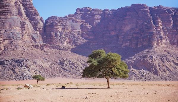 Getty Images 943993120 Jordan Wadi rum 5