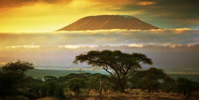 Gettyimages 177726380 Kenya Amboseli