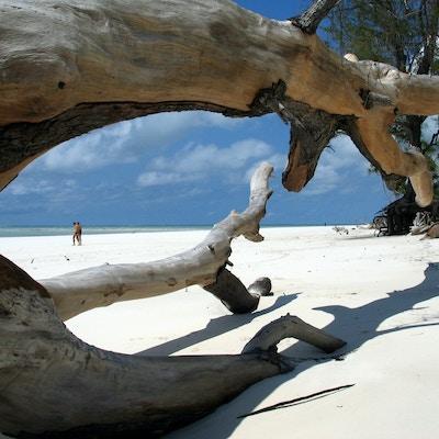 Gettyimages 524881734 Kenya Diani Beach