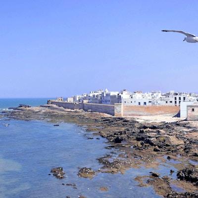 Essaouira 127