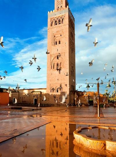 Istock 85135111 Marokko Marrakesh