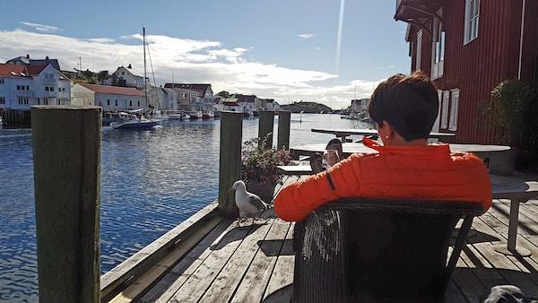 Norge Lofoten Henningsvaer Sol