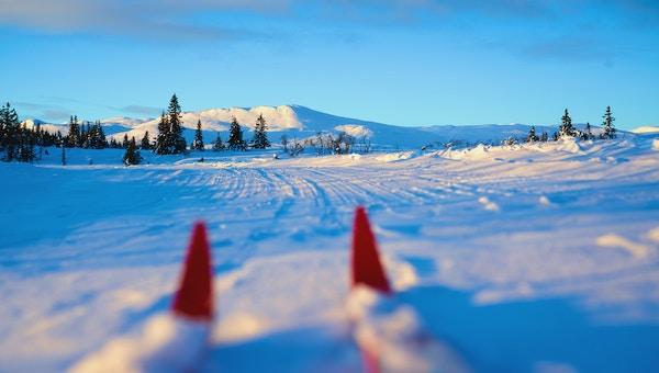 Getty Images 904201340 Norge vinter ski