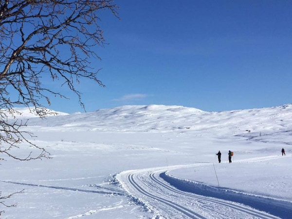 Norge Valdres vinter loype