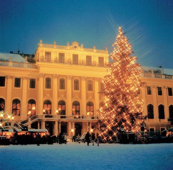 Julefest foran schonnbrunn