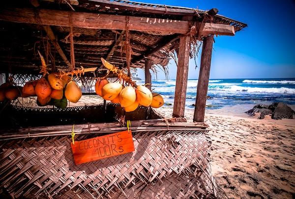 Sri Lanka Strand Kokosnot