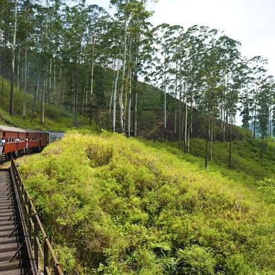 Istock 000024112525 Sri Lanka Tog Nuwara Eliya
