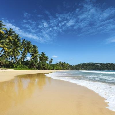 Istock 000055179630 Strand Sri Lanka