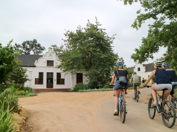 Cycling through the Vineyards De Waal