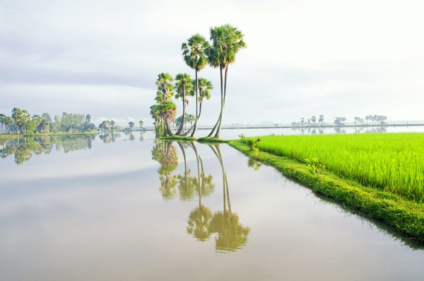 Istock 607731460 Vietnam Mekong Can Tho
